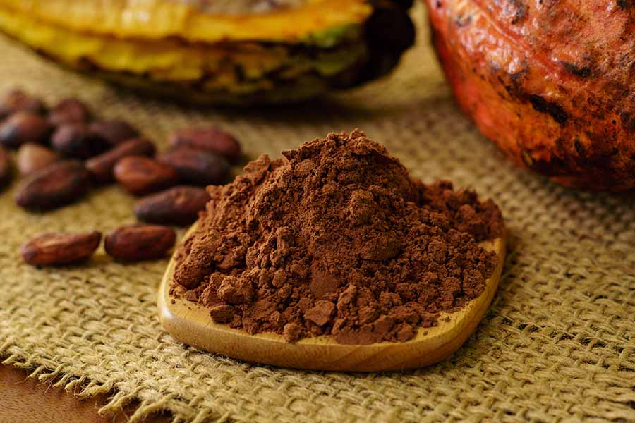 bigstock Cacao Powder And Raw Cocoa Pod 230725057