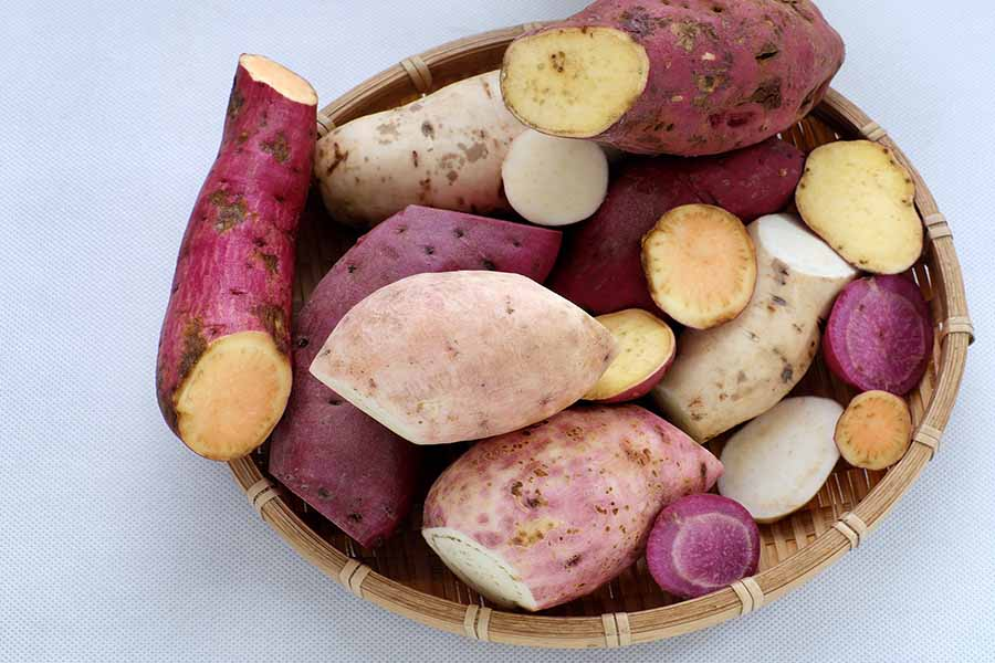 bigstock Diversity Sweet Potato On Whit 154402394