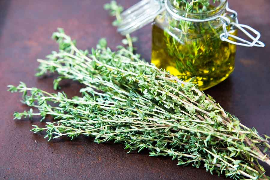 bigstock Thyme Oil Thyme Essential Oil 154552109