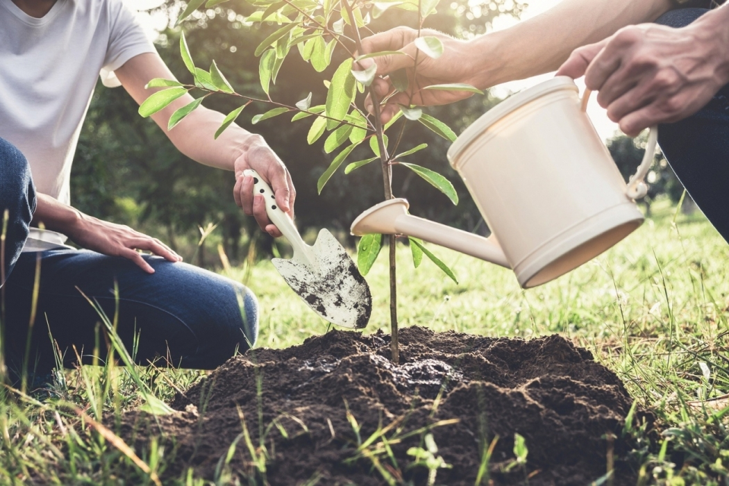 Earth Day 2019 – It's Time to Act and Do More!