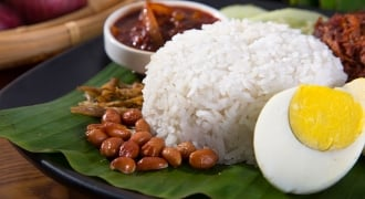 The Healthy Truth About Nasi Lemak