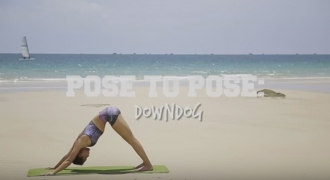 Yoga Basics – How To Downward Dog