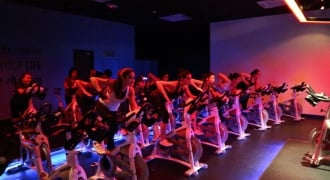 PurelyB Spins and Grooves at FLYCYCLE