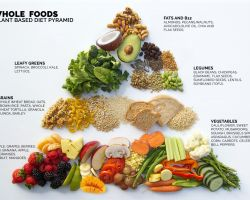 Nutrition Tips For A Plant Based Diet