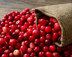 This Fruit Helps Prevent Urinary Tract Infection