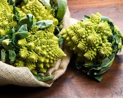 5 Bizarre But Healthy Foods You Should Try
