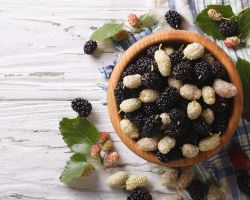 7 Ways Mulberries Are Good For You