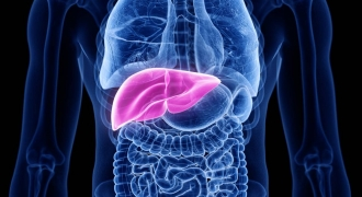 The Magic of Bile & Detoxing Your Liver