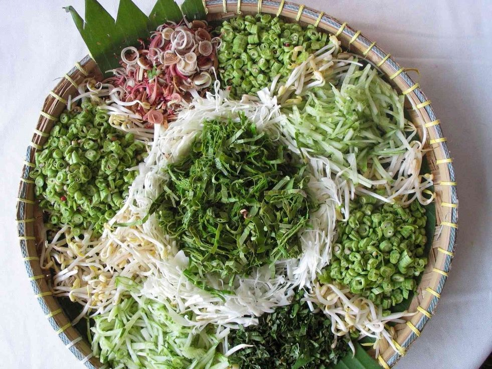 Top 11 Healing Ulams—Traditional Malaysian Herbs You Need To Try