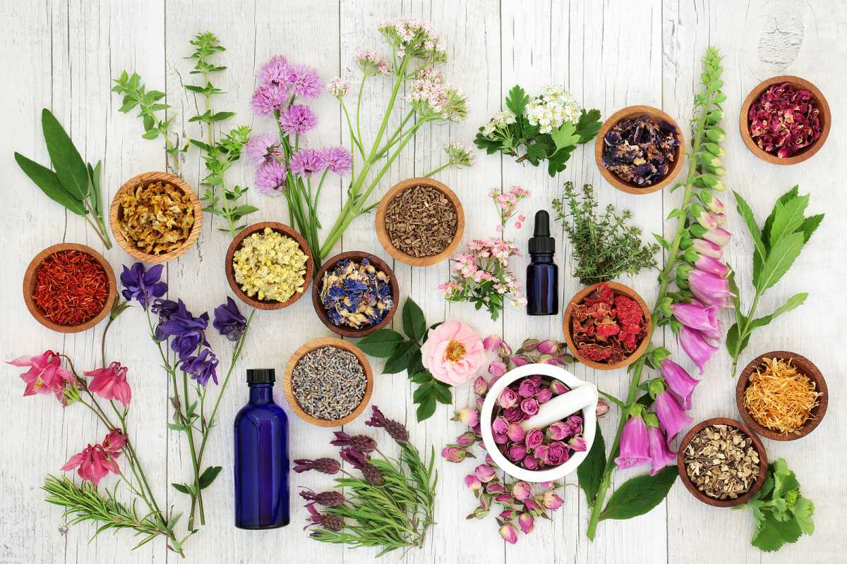 Flowers As A Health Remedy? Yes!