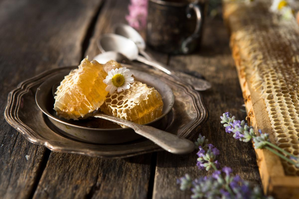 Manuka vs Kelulut:  Let's Talk Honey