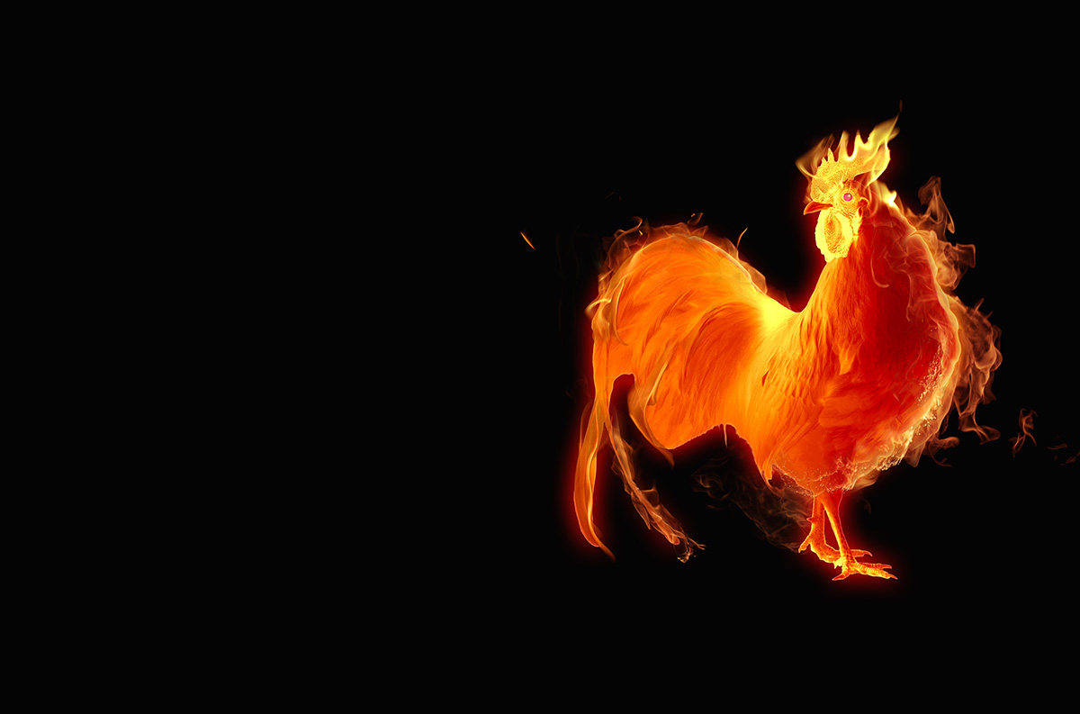 Welcoming The Year Of The Fire Rooster 2017